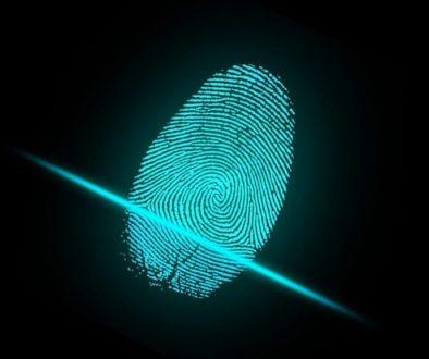 Beth Haddock Data Governance